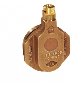 Brass Horizontal Drum Vent For Petroleum Based Applications, 2 inch Bung